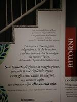 http://patrimonio.museodolom.it/files/original/Mountainrites_024.jpg